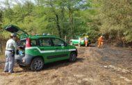 Incendia le sterpaglie e rischia di dar fuoco a un bosco: denunciato agricoltore