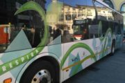 Bus: la linea 5 da domani diventa elettrica