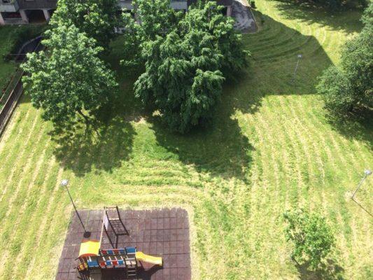 """Segni """"alieni"""" in un parchetto novarese dopo il taglio dell'erba"""