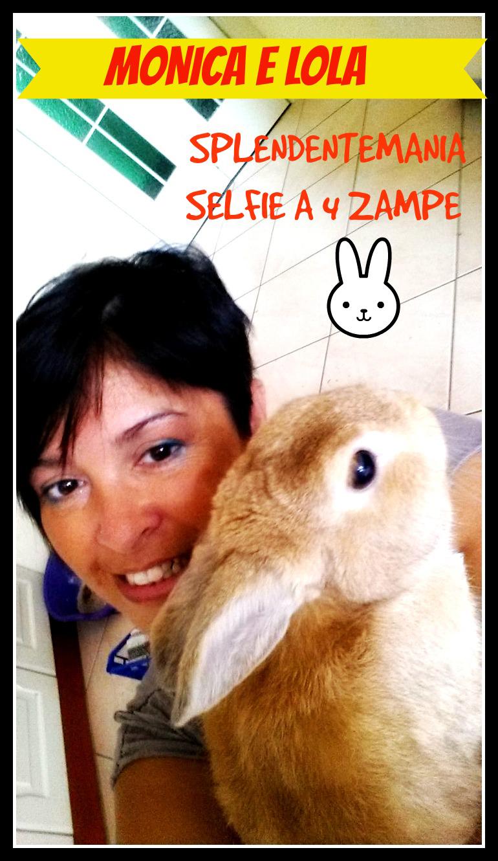 selfie splendente6