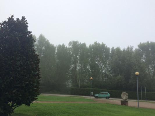 Nebbia 1