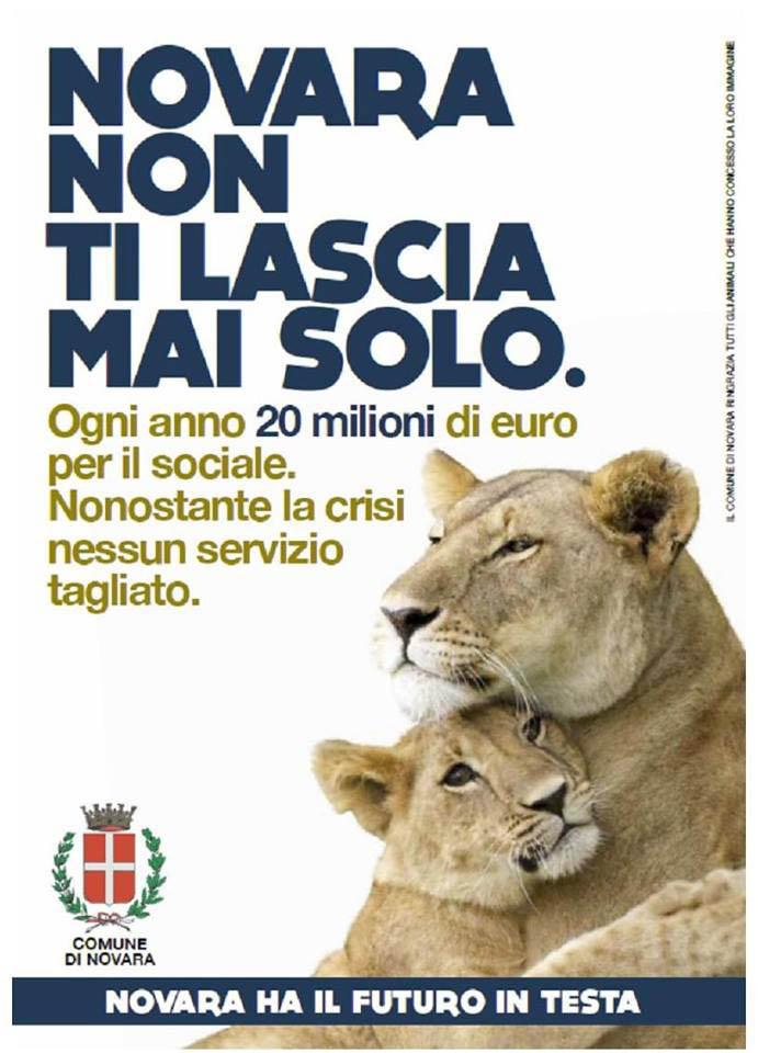 tigre povertà