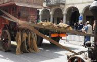 Fiera dell'agricoltura: il 1° maggio si passa ad Oleggio