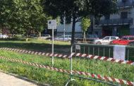 Ancora bocconi avvelenati nei parchi di Novara