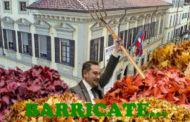 Novara in Blu: Canelli trova la soluzione per le foglie che cadono