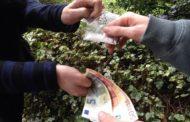 Novaresi in trasferta nei boschi dello spaccio di Vanzaghello