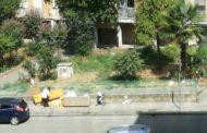 Esasperato dai rifiuti fotografa l'abbandono, posta tutto su Facebook e fa scattare la multa