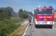 Incendio di sterpaglie a Fontaneto d'Agogna