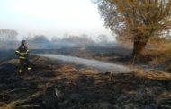 Incendi boschivi, da ieri stato di massima allerta in Piemonte