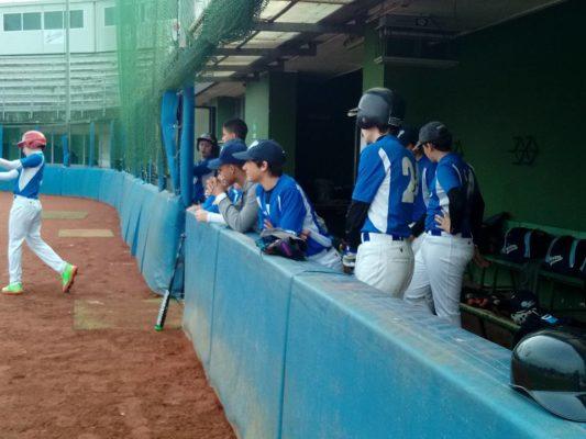 Baseball Softball Novara, Porta Mortara, Piemonte Orientale
