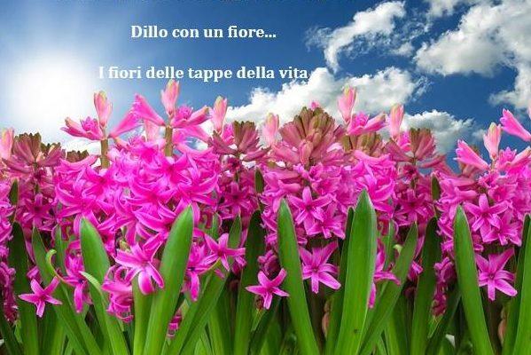 fiori e poesia