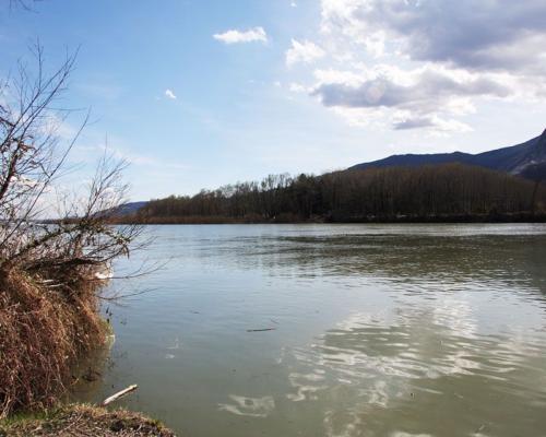Pro natura e territorio, Legambiente e Parchi del Ticino e Lago Maggiore cercano volontari