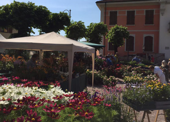 Giardinidea è florovivaismo d'eccellenza nel parco del Castello Visconteo
