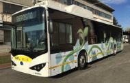 Bus, corse sospese il pomeriggio di Ferragosto