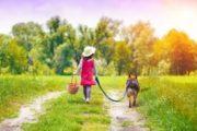 Passeggiata e sfilata al Mottarone nel Bilake Dog Day