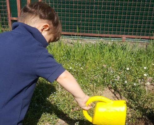 Progetto orti, tempo di raccolta ai nidi del Comune