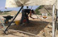 Scopri la storia: visite guidate al sito archeologico di Greggio