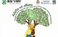 """Trecate, il Comune aderisce al progetto """"Adotta un albero"""""""