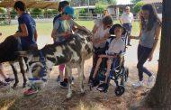 Interventi assistiti con gli asinelli su persone con disabilità