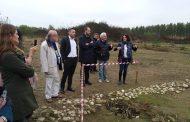 Biandrate, dallo scavo archeologico emerge una spilla romana a forma di pantera