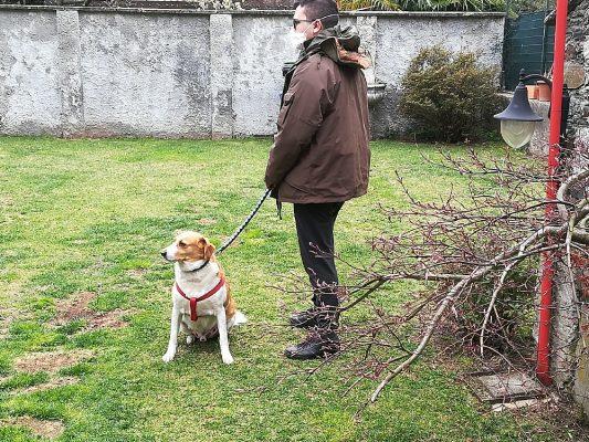 """I volontari di Anpana ed Enpa Novara portano la spesa e forniscono anche assistenza """"pet"""""""