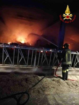 incendio stalla fienile azienda agricola Oleggio
