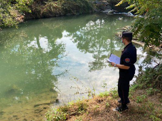 inquinamento pesci morti Terdoppio Novara